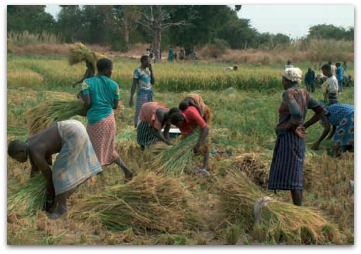 Destination Burkina Faso le projet démarre